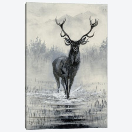 Red Deer 50 Canvas Print #NHM563} by Natural History Museum (UK) Canvas Wall Art
