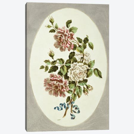 White And Striped Roses, Folio 14 From A Collection Of Flowers (1795) By John Edwards Canvas Print #NHM705} by Natural History Museum (UK) Canvas Print