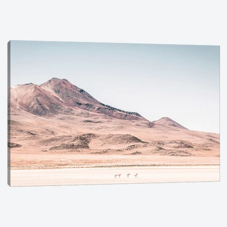 Landscapes Raw 2 Salar de Uyuni, Bolivia Canvas Print #NIA35} by Joe Mania Canvas Art Print