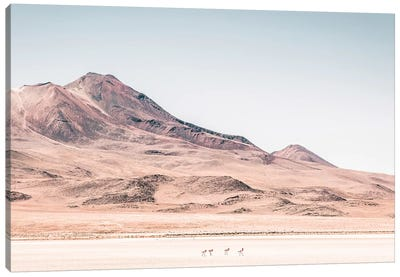 Landscapes Raw 2 Salar de Uyuni, Bolivia Canvas Art Print