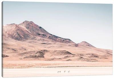 Landscapes Raw 2 Salar de Uyuni, Bolivia Canvas Art Print