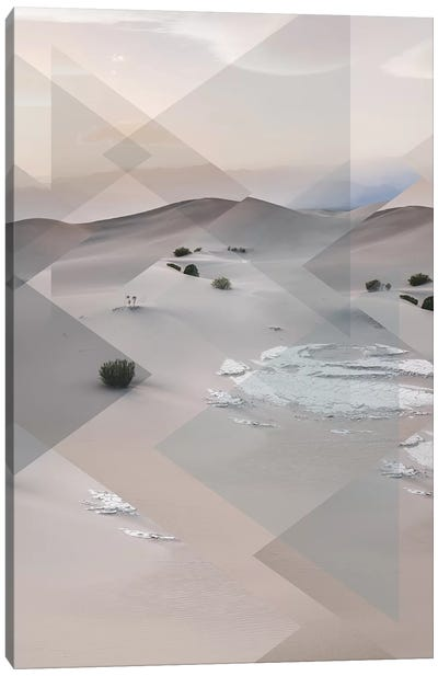 Landscapes Scattered 3 Death Valley Canvas Art Print