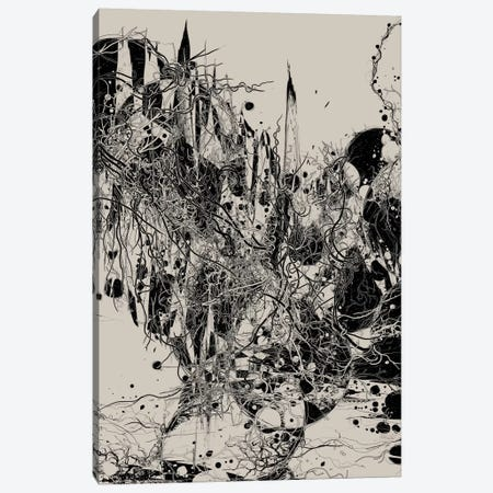 Coexistence Canvas Print #NID10} by Nicebleed Canvas Print