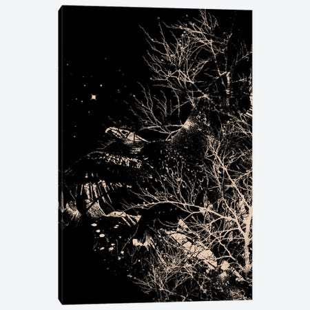 Fly High Canvas Print #NID119} by Nicebleed Canvas Art Print