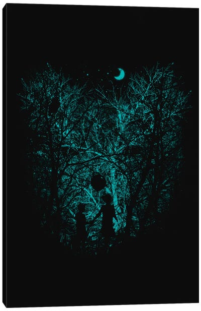Into The Woods Canvas Print #NID130