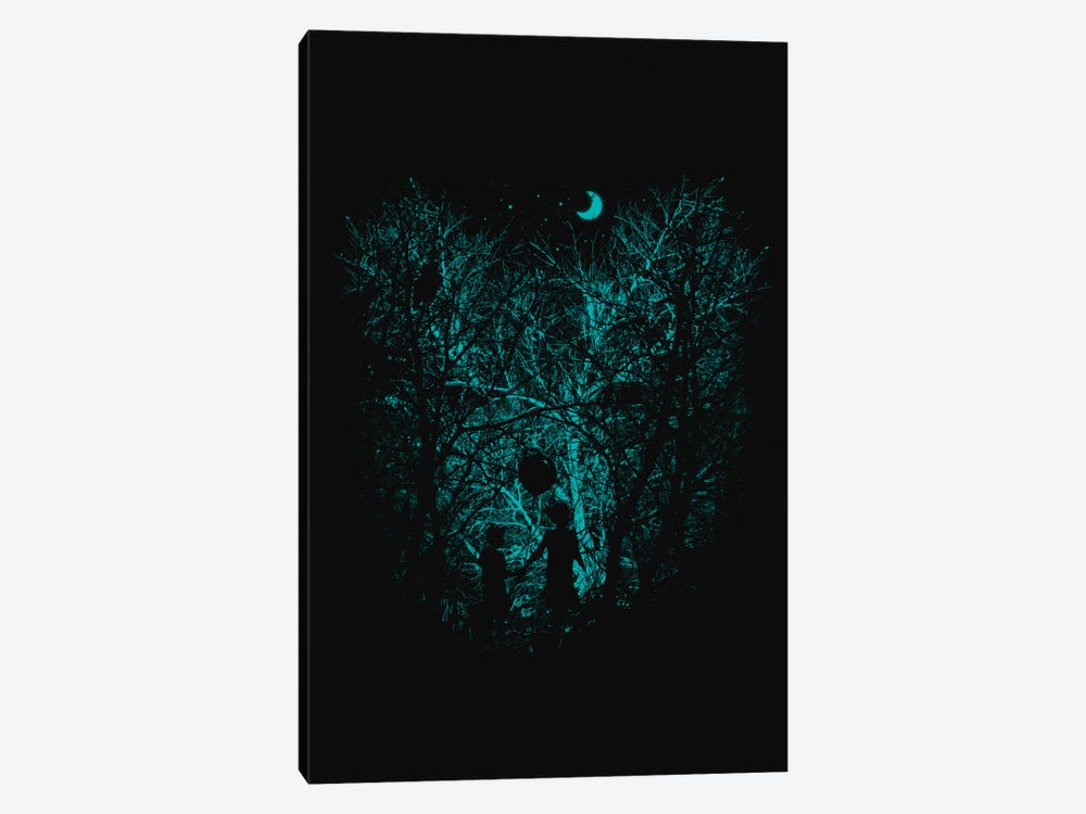 Into The Woods by Nicebleed 1-piece Canvas Artwork