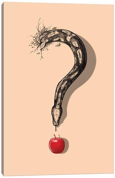 Curious Temptation Canvas Print #NID13