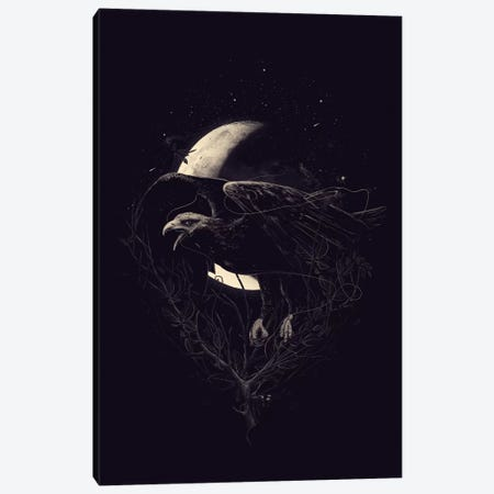 Night Flight Canvas Print #NID142} by Nicebleed Canvas Artwork