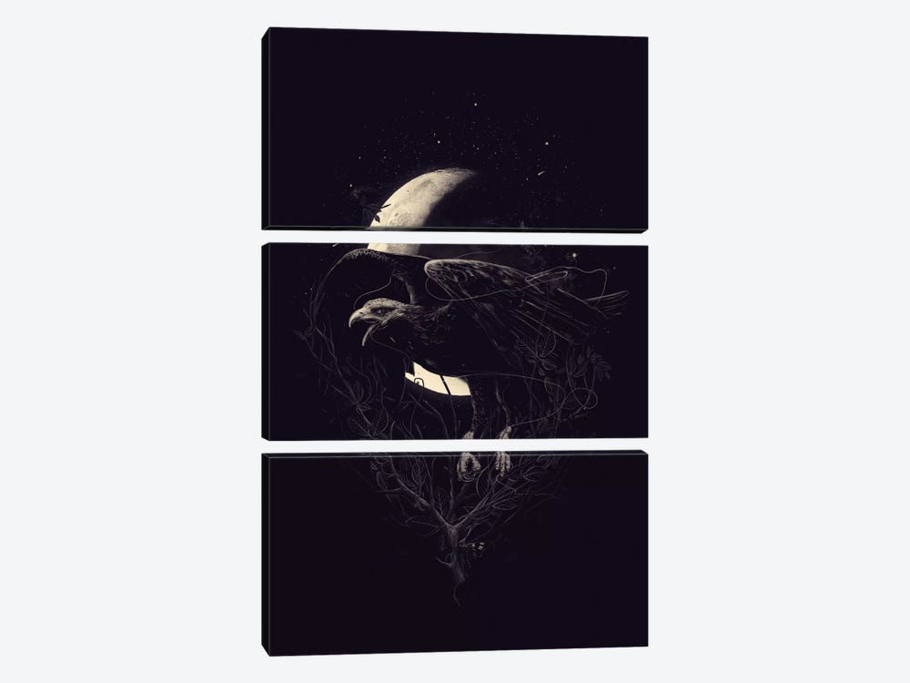 Night Flight by Nicebleed 3-piece Canvas Print