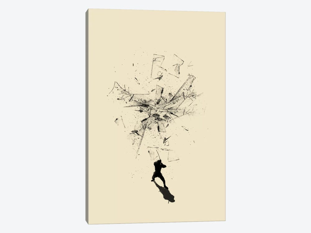 Ninja Moves by Nicebleed 1-piece Canvas Artwork