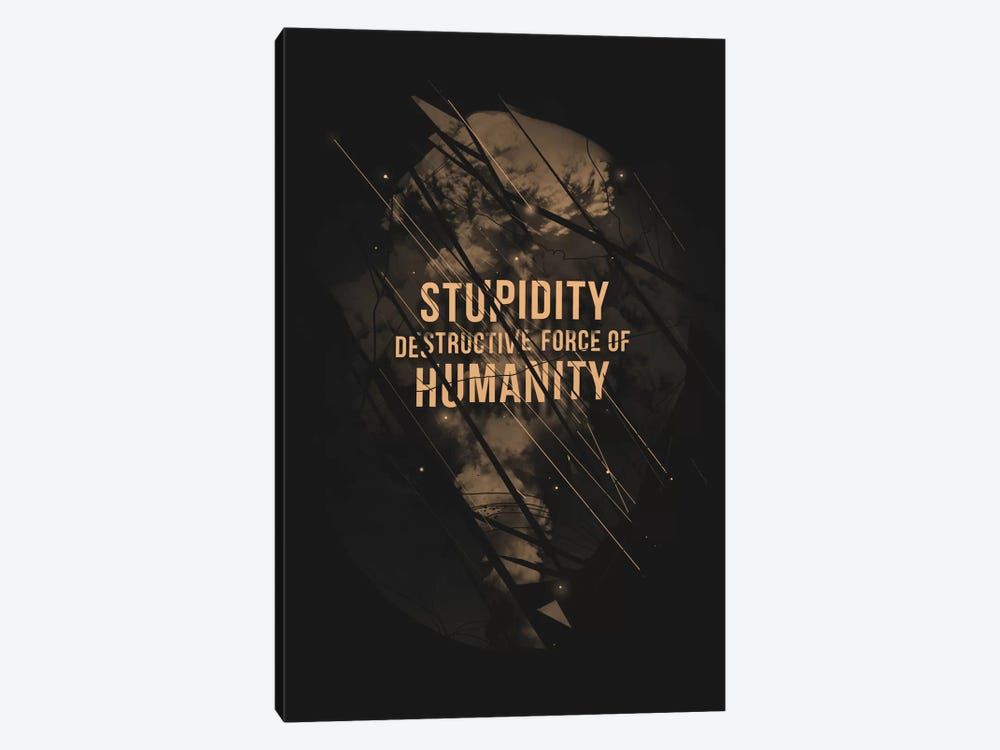 Stupidity 1-piece Canvas Art