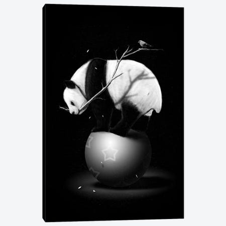 Balance II Canvas Print #NID163} by Nicebleed Canvas Artwork