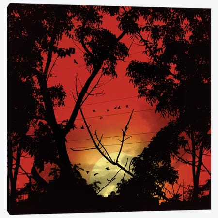 Before Sunset Canvas Print #NID165} by Nicebleed Canvas Art Print
