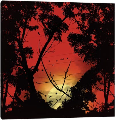Before Sunset Canvas Print #NID165