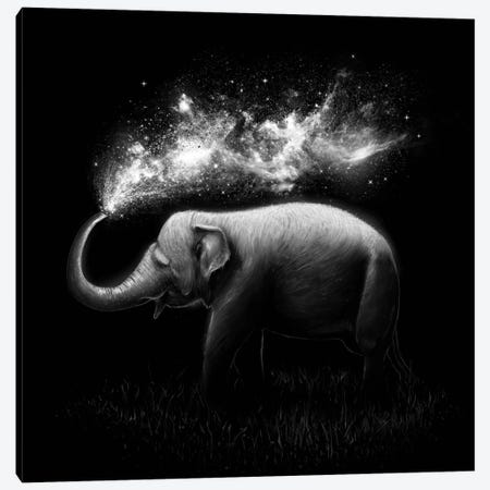 Elephant Splash in B&W Canvas Print #NID173} by Nicebleed Art Print