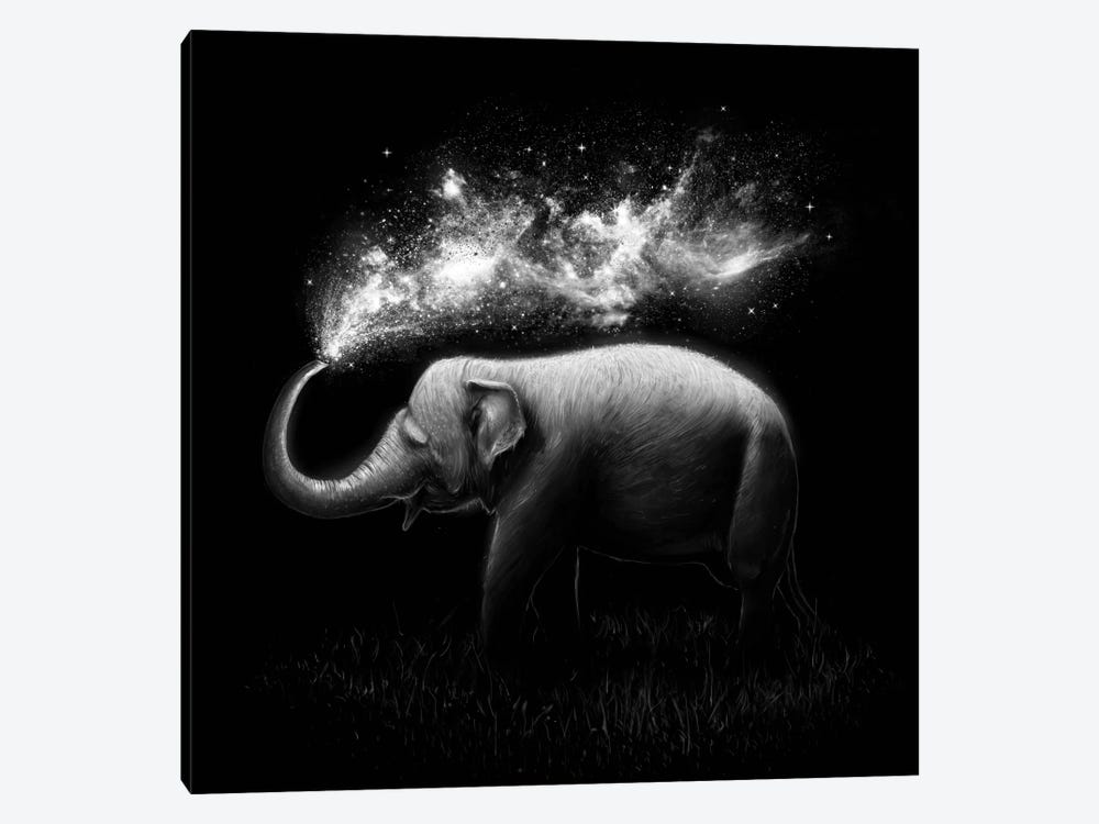 Elephant Splash in B&W by Nicebleed 1-piece Canvas Art Print