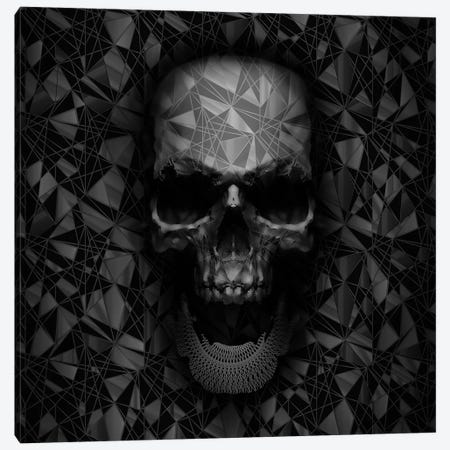 Geometric Skull Canvas Print #NID176} by Nicebleed Canvas Art