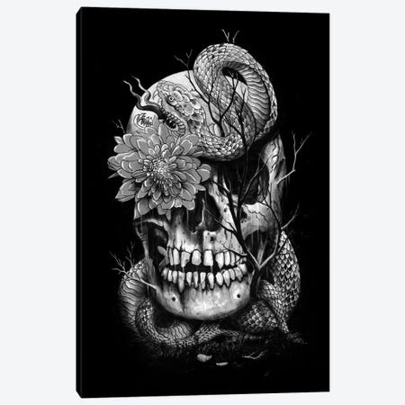 Snake And Skull In B&W Canvas Print #NID185} by Nicebleed Canvas Art Print