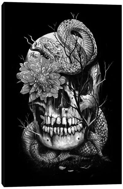 Snake And Skull In B&W Canvas Print #NID185