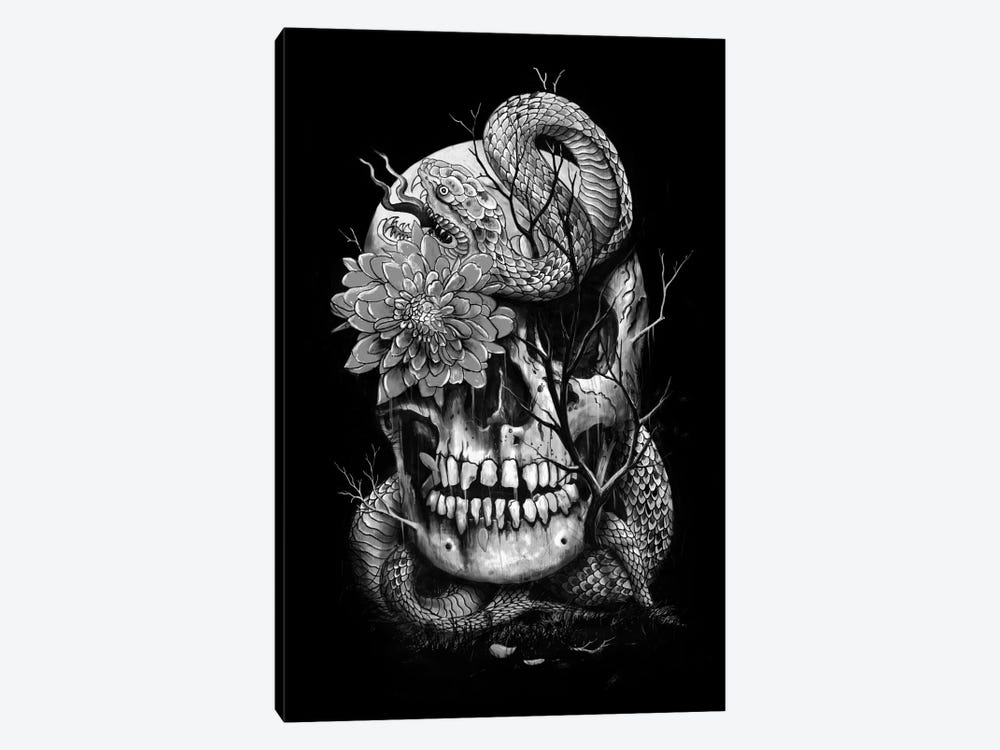 Snake And Skull In B&W by Nicebleed 1-piece Canvas Art