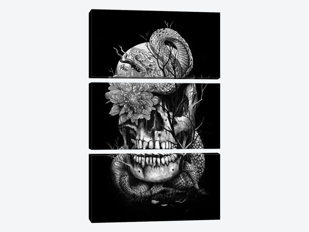 Snake And Skull In B&W by Nicebleed 3-piece Canvas Wall Art