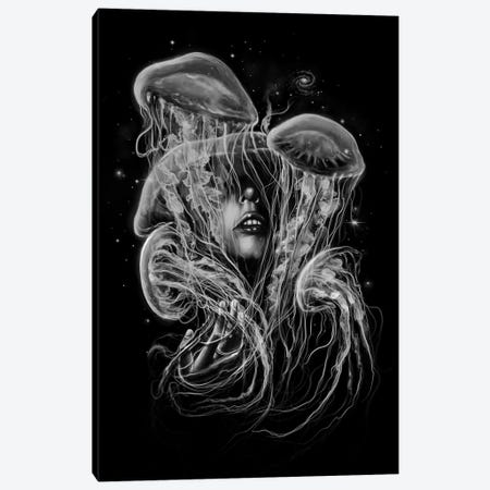 A Beautiful Delusion Canvas Print #NID192} by Nicebleed Canvas Print