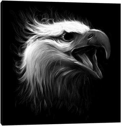 Eagle Eye Canvas Art Print