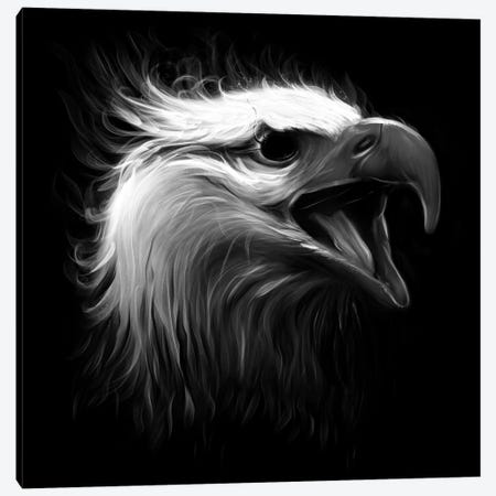 Eagle Eye Canvas Print #NID199} by Nicebleed Canvas Print