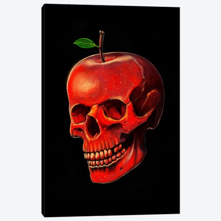 Fruit Of Life Canvas Print #NID201} by Nicebleed Art Print