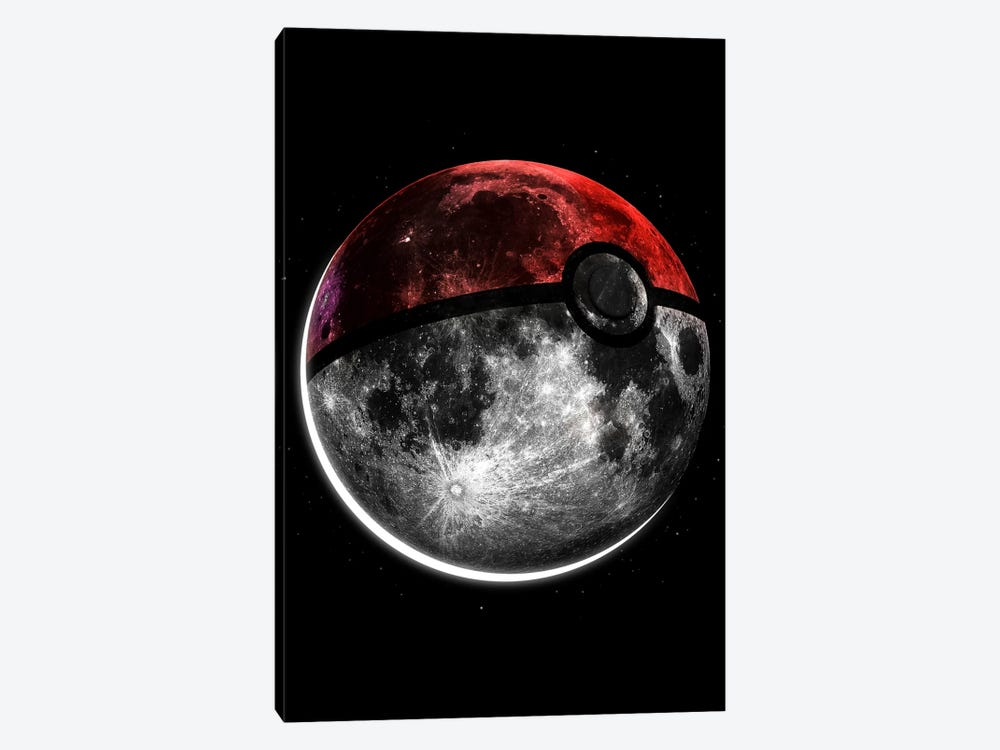 Pokemoon by Nicebleed 1-piece Canvas Art