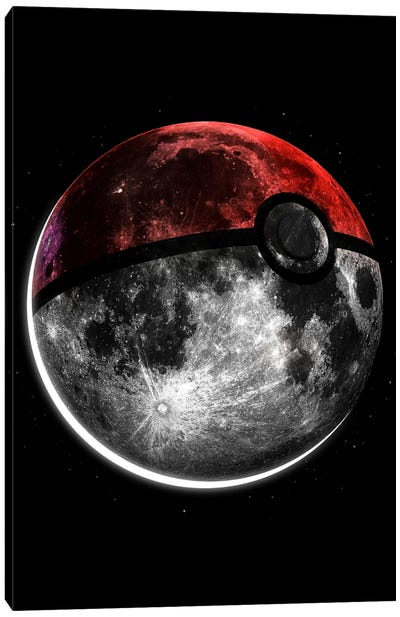 Pokemoon Canvas Art Print