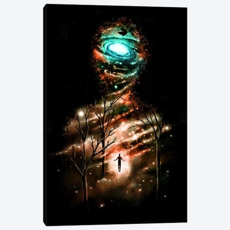 Transcend Canvas Print #NID217} by Nicebleed Canvas Art Print