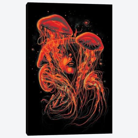 A Beautiful Delusion II Canvas Print #NID219} by Nicebleed Canvas Art