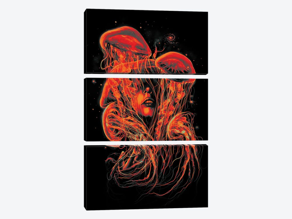 A Beautiful Delusion II by Nicebleed 3-piece Canvas Art Print