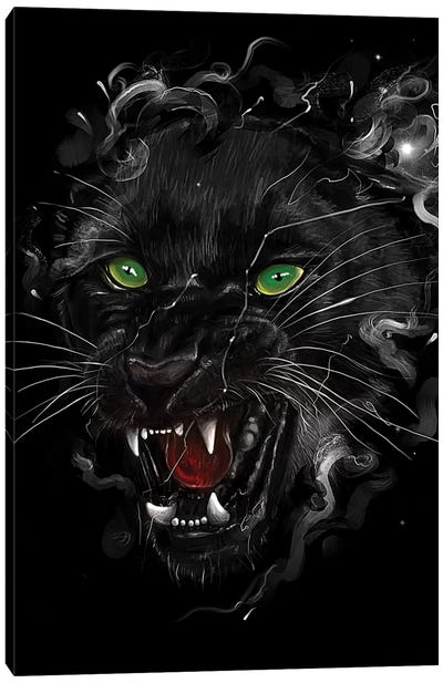 Big Cats Series: Black Panther Canvas Print #NID220