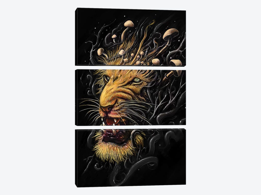 Lion II by Nicebleed 3-piece Canvas Print