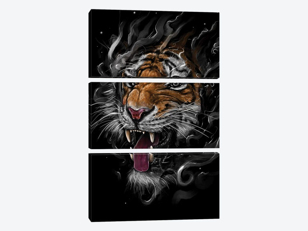 Tiger by Nicebleed 3-piece Canvas Art