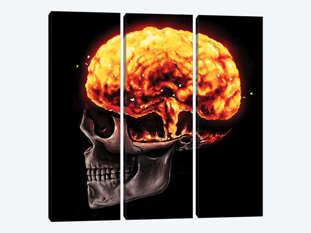 Mind Blown by Nicebleed 3-piece Canvas Art