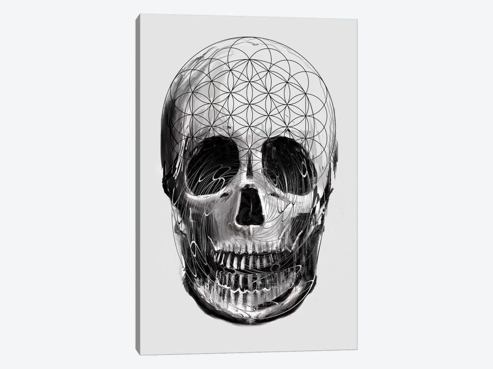 Sacred Skull 1-piece Canvas Art