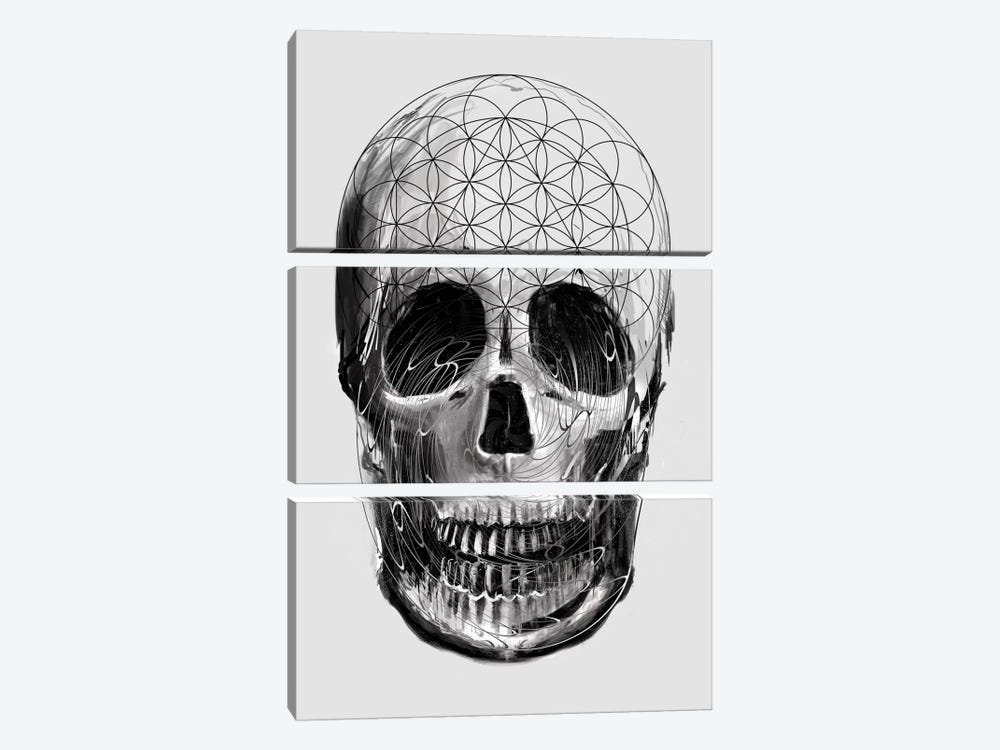 Sacred Skull by Nicebleed 3-piece Canvas Artwork