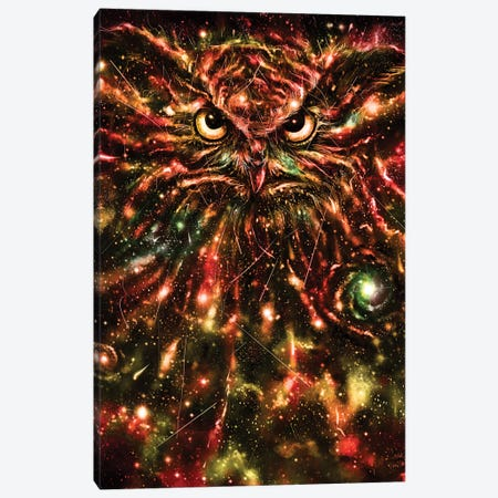 Space Owl Canvas Print #NID236} by Nicebleed Canvas Art Print