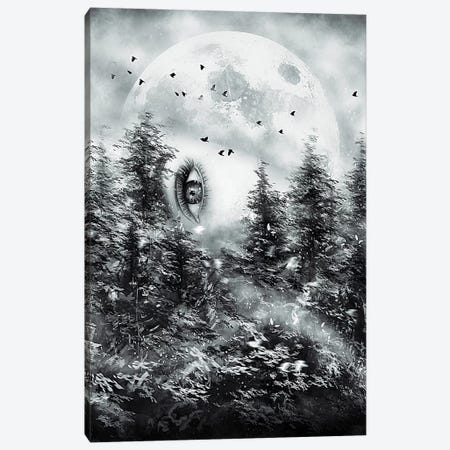 The Watcher Canvas Print #NID238} by Nicebleed Canvas Art