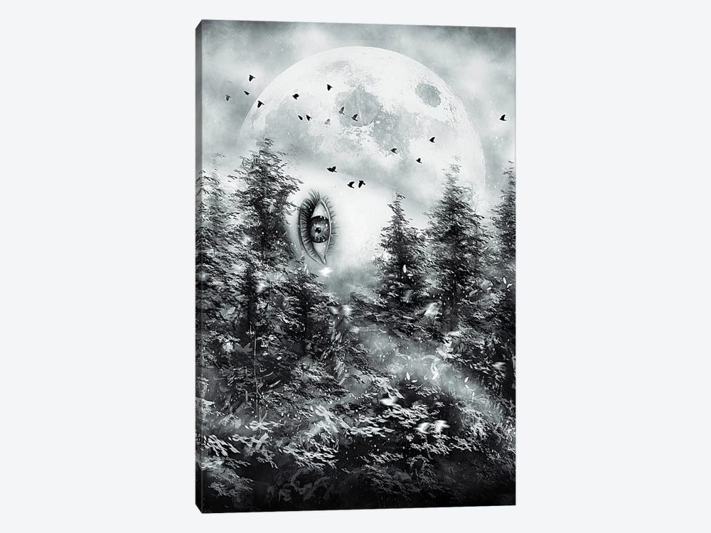 The Watcher by Nicebleed 1-piece Canvas Artwork
