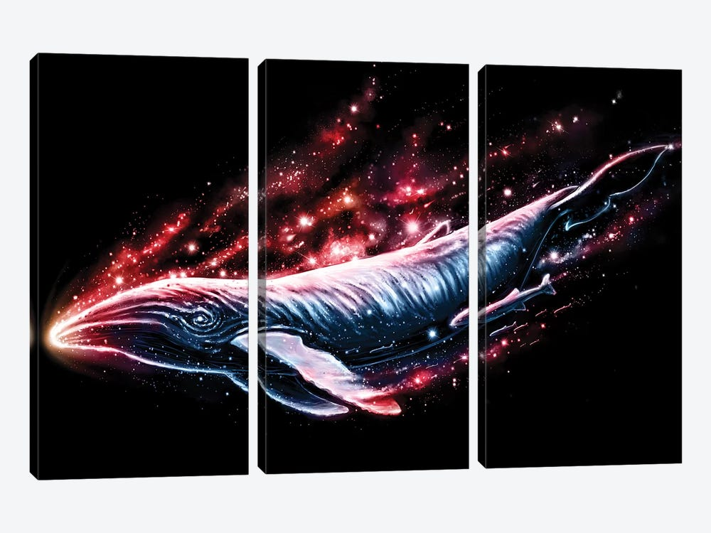 Voyager by Nicebleed 3-piece Canvas Print