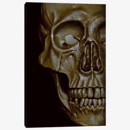 Skulled Canvas Print #NID259} by Nicebleed Canvas Art