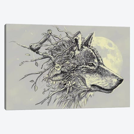 Gray Wolf Canvas Print #NID271} by Nicebleed Canvas Artwork