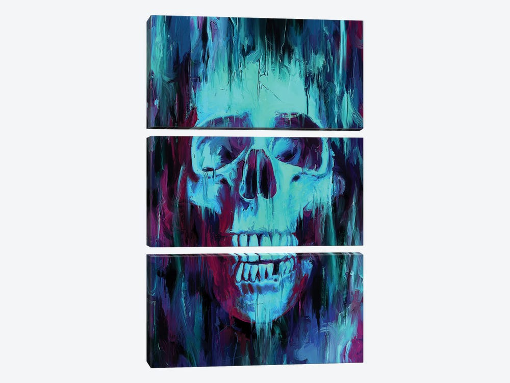 Skull Paint by Nicebleed 3-piece Canvas Art Print