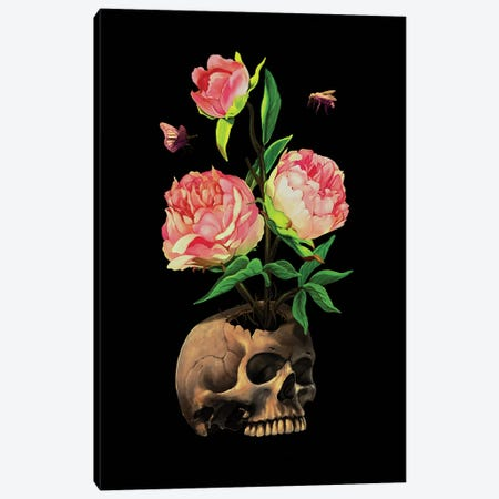 Rebirth (Life And Death) Canvas Print #NID320} by Nicebleed Canvas Artwork