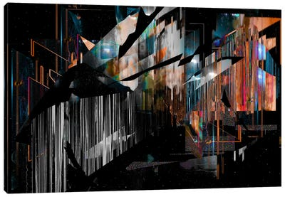 Inside Out Canvas Print #NID34