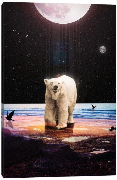 Lone Soul Canvas Art Print